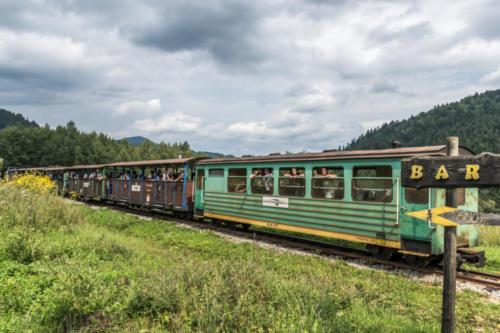 Pociąg Kolejki